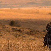 the-salvation-Kristian-Levring-critique-cinema