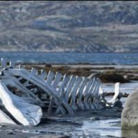 Leviathan-critique-film