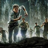 the-maze-runner-film-le-labyrinthe-dystopie