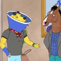 bojack-horseman-saison-2-critique-series-animation-Raphael-Bob-Waksberg
