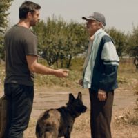 dogs-film-critique-roumanie
