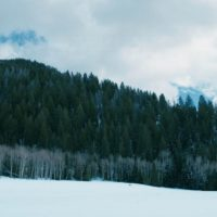 wind-river-taylor-sheridan-film-critique-jeremy-renner-lion-mountain