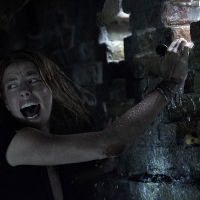 Crawl-film-alexandre-aya-critique-cinema