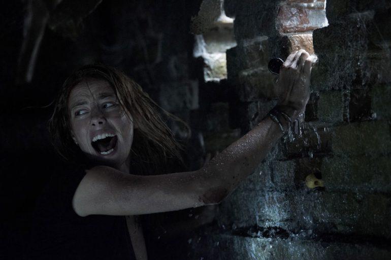 Crawl-film-alexandre-aya-critique-cinema