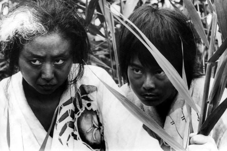 Onibaba de Shindo - Copyright Wild Side