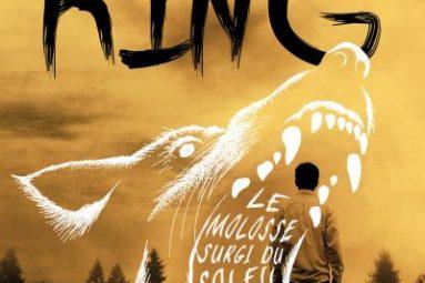 Le-Molosse-surgi-du-soleil-critique-livre