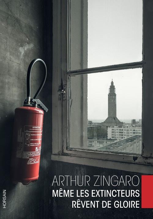zingaro-livre-critique