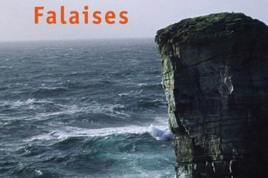 falaises-olivier-adam-roman-analyse