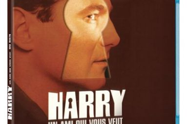 Harry-un-ami-qui-vous-veut-du-bien-Blu-ray-critique